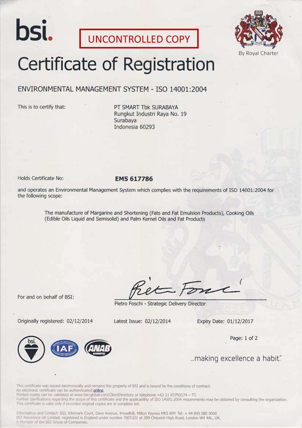 Environmental Management System ISO 14001:2004